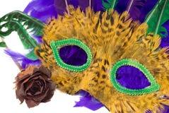 Het Masker van Gras van Mardi royalty-vrije stock foto