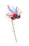 Het masker van het Gras van Mardi Stock Afbeelding