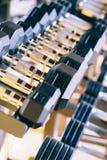 Het materiaal van domorengewichten op een rij bij de gymnastiek Stock Afbeeldingen