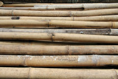 Het materiaal van het bamboe Stock Fotografie