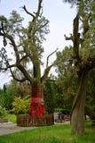 Het mausoleum van de Keizer Wudi van Han Guang stock foto