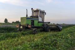 Het mechanische oogsten van veevoer stock fotografie