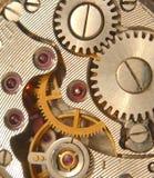 Gekronkeld horloge Stock Foto's