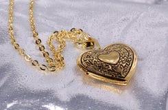 Het Medaillon van het hart stock foto's