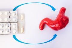 Het medicijn in pillen in blaar wijst maag op model De behandeling van de conceptenfoto van maagziekten, maagzweren, gastritis, h stock afbeeldingen
