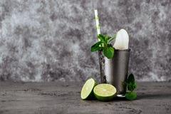 Het medicijndrankje van de cocktailmunt met ijs stock afbeelding