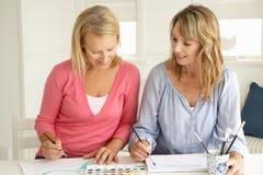Het medio leeftijdsvrouwen schilderen Stock Afbeeldingen