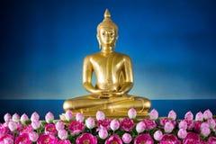 Het mediteren Buddhas Stock Afbeeldingen