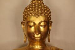 Het mediteren Buddhas Royalty-vrije Stock Fotografie