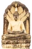 Het mediteren van Boedha Stock Afbeeldingen