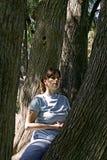 Het mediteren van de vrouw in een boom Stock Afbeelding