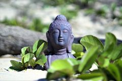 Het mediteren van het standbeeld van Boedha met bokeh Royalty-vrije Stock Foto's