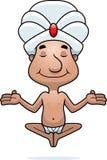 Het Mediteren van Swami Stock Foto's