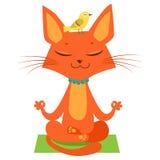 Het mediteren van Yoga Cat Vector Grappig Beeldverhaal Cat Practicing Yoga Treed in Yogazitting toe royalty-vrije illustratie