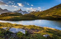 Het meer Bachalpsee en zet Schreckhorn, Zwitserland op Royalty-vrije Stock Foto's