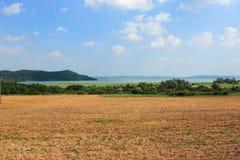 Het meer Balaton Royalty-vrije Stock Fotografie