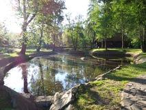 Het meer in binnenplaats van het Zemelenkasteel royalty-vrije stock fotografie
