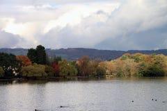 Het meer Cardiff van het Roathpark stock foto