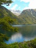 Het Meer/de Bergportret van Nieuw Zeeland Stock Foto's