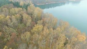 Het Meer in de herfstbos stock footage