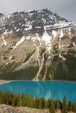 Het meer en de bergen van Peyto royalty-vrije stock afbeelding