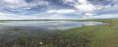 Het meer en het gras van het aardlandschap royalty-vrije stock foto's