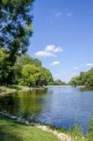 Het meer in het park Stock Foto