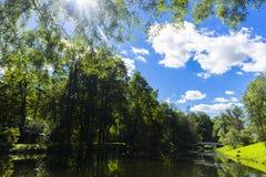 Het meer in het park De ZOMERlandschap Royalty-vrije Stock Fotografie