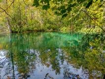 Het meer met turkoois water in de herfst bos stock foto