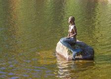 Het meer Mummelsee met Hornisgrinde in Seebach, Zwart Bos, stock fotografie