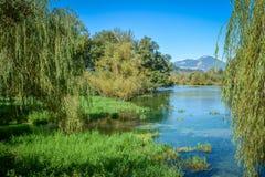 Het Meer Natuurlijke Reserve van Postafibreno, in de provincie van Frosinone, Lazio, Italië Royalty-vrije Stock Afbeeldingen