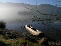 Het meer is ontwaken Stock Foto's