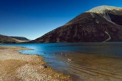 Het meer Pearson/Moana Rua Wildlife Refuge bepaalde van in Craigieburn Forest Park in het gebied van Canterbury, Zuideneiland de  Stock Afbeelding