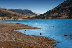 Het meer Pearson/Moana Rua Wildlife Refuge bepaalde van in Craigieburn Forest Park in het gebied van Canterbury, Zuideneiland de  Royalty-vrije Stock Afbeeldingen