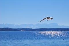 Het meer Starnberger ziet in Beieren royalty-vrije stock afbeeldingen