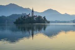 Het meer tapte met St Marys Kerk van de Veronderstelling op het kleine eiland af; Afgetapt, Slovenië, stock foto