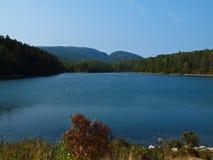 Het meer van Acadia Stock Afbeeldingen