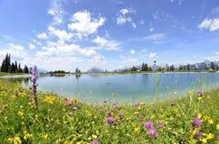 Het meer van Alpin Stock Foto's