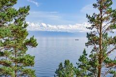 Het meer van Baikal door de bomen Stock Foto's