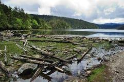 Het meer van Bitahai Stock Foto's