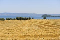 Het meer van Bolsena (Lazio, Italië) Stock Foto's