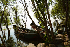 Het meer van bootbomen Stock Foto