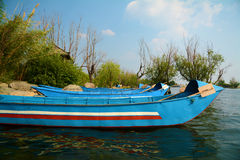 Het meer van bootbomen Stock Afbeelding