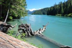 Het meer van Cheakamus Stock Afbeeldingen
