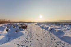Het Meer van Comana in de winter Stock Afbeeldingen