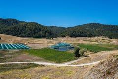 Het Meer van de Aooslentes in Metsovo in Epirus bergen van Pindus in noordelijk Griekenland royalty-vrije stock afbeeldingen