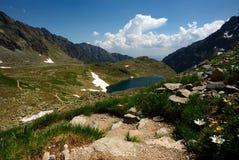 Het meer van de berg, het lopen weg en bloemen Royalty-vrije Stock Afbeeldingen