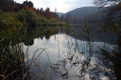 Het meer van de daling stock foto's