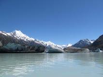 Het Meer van de Gletsjer van Tasman Stock Afbeeldingen