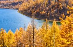 Het meer van de herfst royalty-vrije stock fotografie